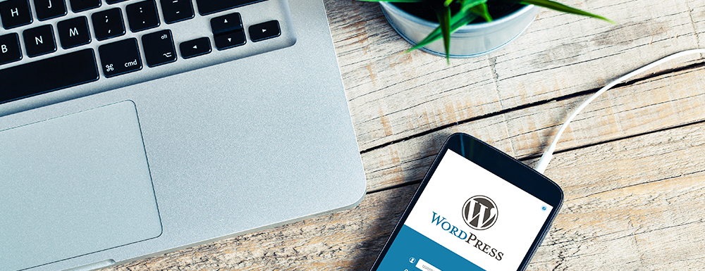 Wordpress is a blogging and site platform perfect for anyone who wants to take their site to the next level. I'm sharing some important things for beginners to know about the platform including plugins, themes, security, and some facts about SEO. I'll even explain the difference between WordPress.com and WordPress.org